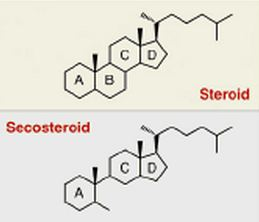 vitamin_d_steroid